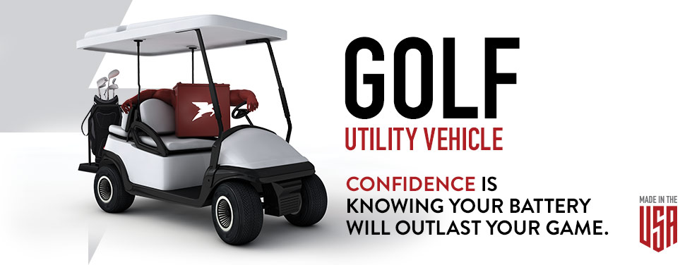 Golf and Utility Vehicles : NEV i