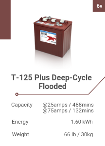 T-125 Plus Deep-Cycle Flooded